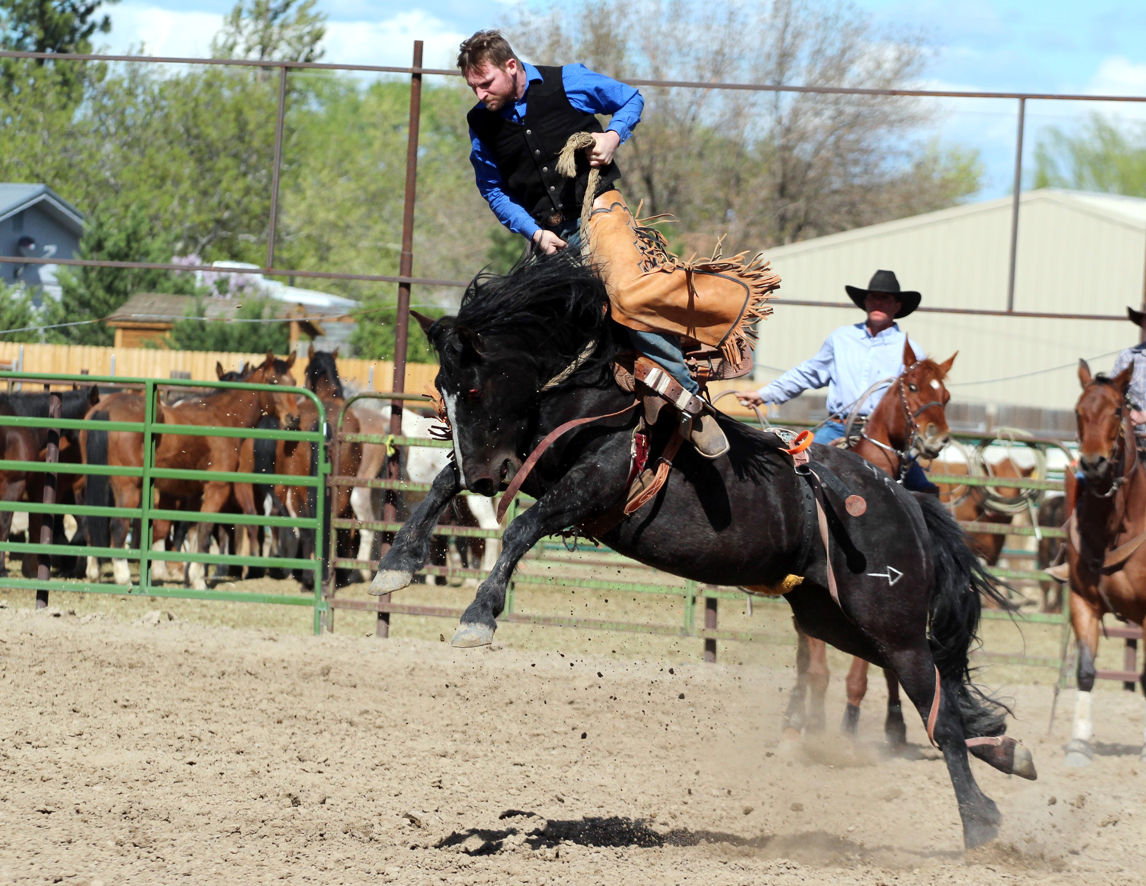 Photo Gallery: Novice rodeo and celebrating Children's Day